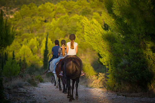 Horseback riding, Dubrovnik countryside / 86 EUR